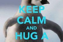 keep calm / keep calm and ...