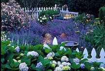 Garden stuff / by Sherrie Beaver