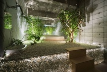Dream Bathroom / by Taratorn Pettersson