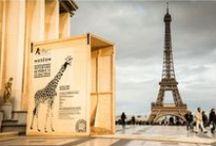 12e arrondissement de Paris / Clichés dans le 12e arrondissement de Paris, entre Daumesnil et Bel-Air...