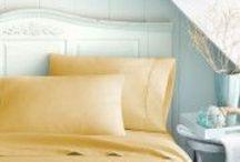 Holy Sheets! / Bed Sheets
