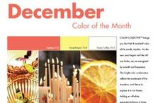 2013 Color of the Month / The color experts at Pratt & Lambert share what colors inspire designers and consumers in the home decor market throughout the year.