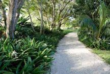 Gardens   Warm climate