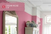 Lose Yourself In Pinks / Make it pop with pink. Pratt & Lambert's expert collection of various pinks offers you the chance to get lost in beautiful color you'll want to bring home and show off.