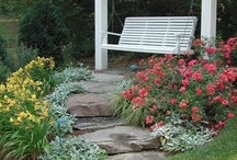Perennials and Rock Gardens / Needing help in planning several flower beds and rock gardens.  These are just a few thoughts of what I've seen that I may incorporate. / by Tammy Bowling