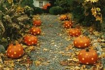 Halloween & Thanksgiving / by Tiffany Adler