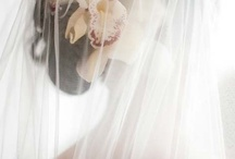 Bridal Bliss: The Veil