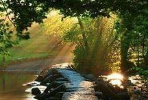heavenly light / beautiful shots..