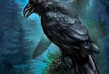 singing in the dead of night... / blackbirds...