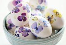 Hoppy Easter / by Lori Miller