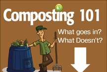 """It's Not Easy Being """"Green"""" / Natural Cleaning products, eco-friendly tips, etc. / by Maria Walcott"""