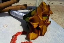 Flowers                                    #destinationwedding #cancunweddings / #cancun #weddingplannercancun#destinationweddingcancun #weddingrivieramaya #cancunweddings #wedding #beach #cancunweddingplanners #weddingplanner #rivieramayawedding #destinationwedding #whitechicwedding #whitechic #bodas #bodascancun #bodasenlaplaya #weddingonthebeach