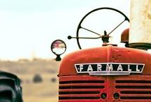 Farm Kinda Life<3 / by Ashley Stevens
