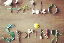 Spring and Summer / by Pippa Gardner