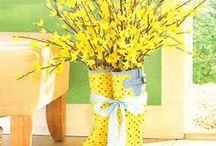 Spring/Summer / Spring ideas / by Sheri Ritter