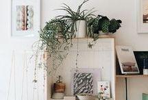 Home / by Alexandra Celia