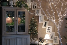 Christmas Lights / Fun lighting ideas for the holidays / by PartyLights.com