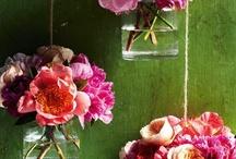 Garten und Blumen