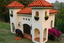Dog Houses / Dog Houses / by Betty Kottkamp
