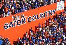 Florida Gators Football / by Betty Kottkamp