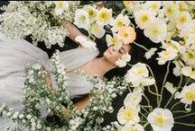 Collection III: Alexandra Grecco Bridal / www.alexandragreccobride.com