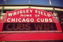 Chicago Cubs - 2016 / Baseball team out of Chicago. / by Betty Kottkamp