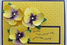 Card Ideas / by Kim-Rae Novroski