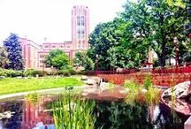 University of Denver Home Sweet Home