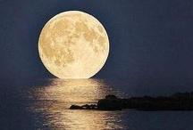 Moonlight / by Katherine Lipton