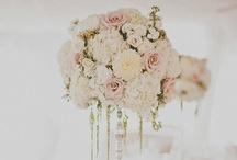 Wedding Flowers / by Kim-Rae Novroski