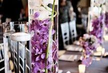 Centrepieces - cylinder vases