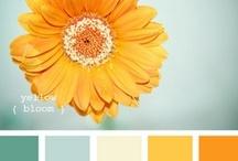 Color Love / color inspiration