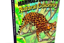 Animal Coloring Books / Sample Pages and Book Covers From Natural Colouring Books by ECPpublishing