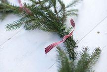 Christmas / by Mariko Aruga West