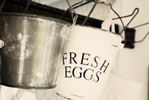 Fresh Egg Living / by Denise Trigo