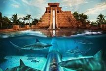 "Aquaventure at Atlantis / Aquaventure, Atlantis Paradise Island's water park, is a one-of-a-kind 141-acre waterscape. This non-stop aquatic thrill ride features over 20 million gallons of water, incredible Atlantean-themed towers, thrilling high-speed water slides, a mile-long river ride, 20 swimming areas, a spectacular kids water-play fort and 11 refreshing swimming pools. For vacationers young and older; the water park offers an extreme level of excitement and delivers an ""aqua"" adventure unlike any other."