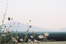 Beautiful Places and Spaces / by Eleanor Klaczek