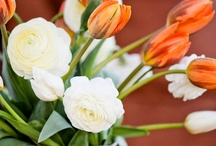 Bouquets & flower combos / by Colleen Rosenthal