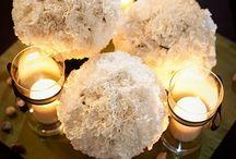 Weddings/Parties/Events / by Farida Abou El Dahab