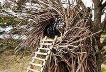 SQUATCHITECTURE / Ideas for your bigfoot nest.