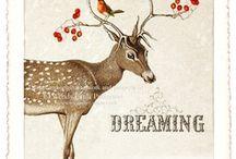 Christmas / by Eleanor Klaczek