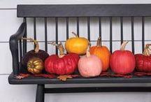 autumn. / by Lauren Schweitzer