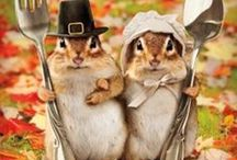 Thanksgiving / by Susan Yang