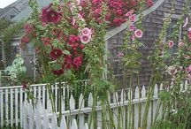 Garden Inspiration / by Joni Johnston