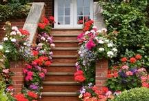 Jardins  (gardening) / by Vanilda Jacobson