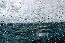 {My Loves. Rain} / by CoffeeandKitties *