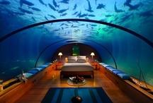 Bizarre & Unusual Hotels