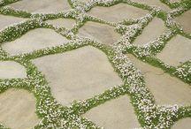 OUTDOORS. / Wayde's Landscaping Board.