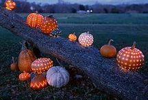 Halloween / by Sara Saylor