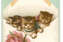 Cat Prints / vintage prints, posters and advertising / by Sandy Bobbitt